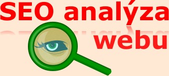analyza webu